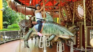 Singapore Zoo Special Experiences Carousel