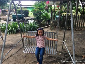 ANIMAL RESORT SINGAPORE SWING