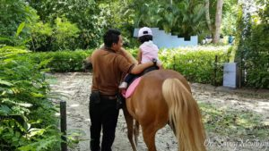 Singapore Zoo Special Experiences Pony Ride