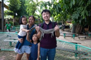 Davao City Crocodile Park Holding Crocodile
