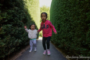 Melbourne with Kids Enchanted Garden Maze