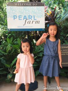 Pearl Farm Beach Resort Marina Jetty