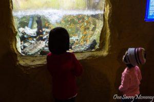 Taipei Yehliu Ocean World Aquarium