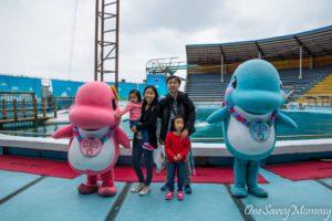 Taipei Yehliu Ocean World Dolphin Show